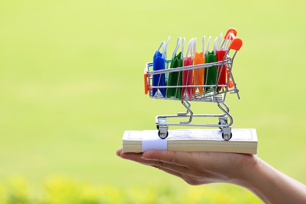 Women hand hold cart and shopping bags inside basket on the money. Premium Photo