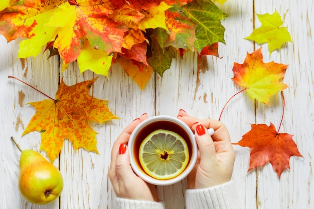 Women's hands holding a cup of hot tea with lemon on a white wooden table with colorful autumn leaves Premium Photo