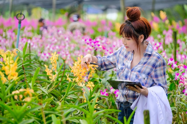 Women's orchid researchers are exploring and documenting the characteristics of orchids in the garden. Premium Photo