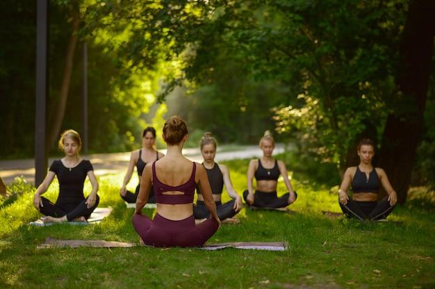 女性は芝生の上でヨガのポーズで座って、グループトレーニング Premium写真