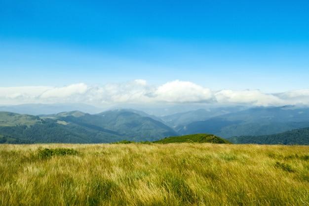 Splendido paesaggio delle montagne dei carpazi ucraini. Foto Gratuite