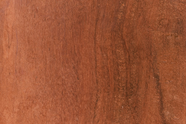 Wood background surface with old natural texture Premium Photo