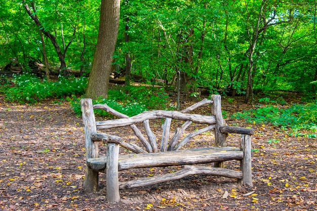 ニューヨーク市セントラルパークの木製ベンチ Premium写真