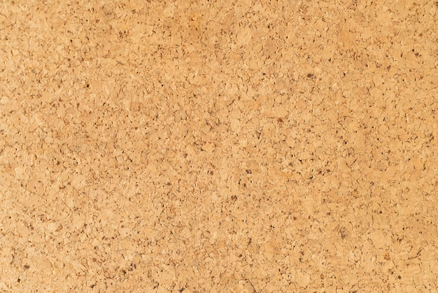 Corkboard Vectors Photos And Psd Files Free Download