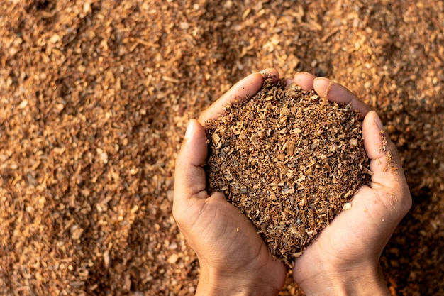 Wood chips obtained from the manufacturing industry. Premium Photo