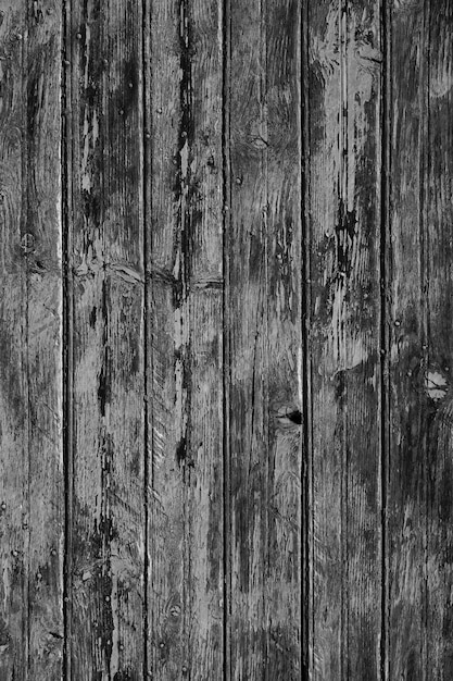 white wood door texture. Interesting Texture Wood Door Texture Free Photo Intended White Wood Door Texture