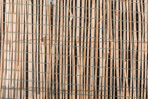 Wood fence texture in close up Free Photo