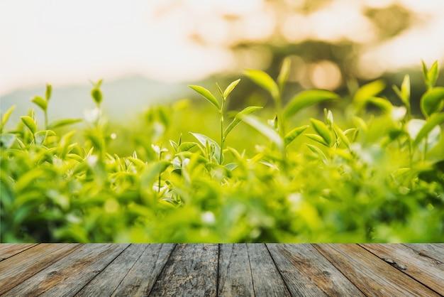 Wood floor green tea and fresh leaves