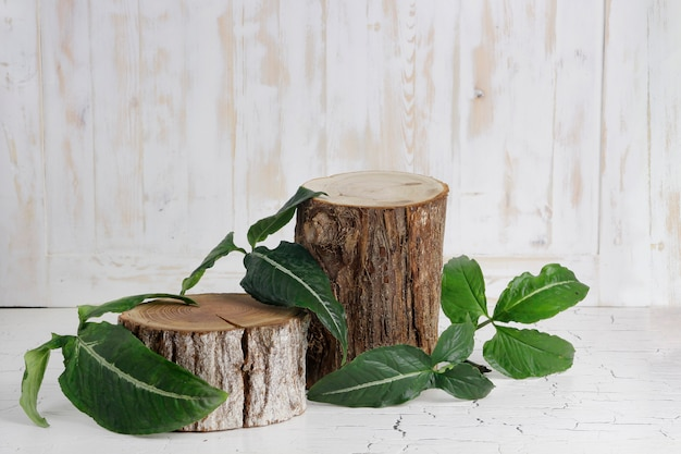 Wood slice podium with leaves and wood texture background Premium Photo