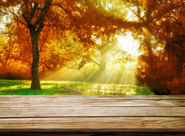 Wood table in autumn landscape with empty space. Premium Photo