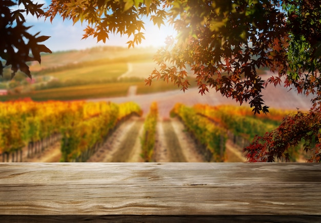 Wood table background in autumn vineyard country landscape. Premium Photo