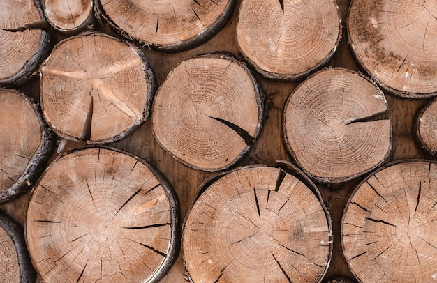 Wood texture background have many log that cut from Premium Photo