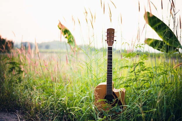 Wooden acoustic guitar lying in green grassy field Premium Photo