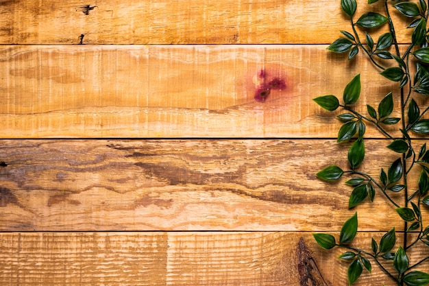 Wooden background with leaves and copy space Free Photo