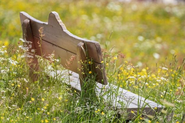 Panca in legno nel mezzo di un prato fiorito in una giornata di sole Foto Gratuite