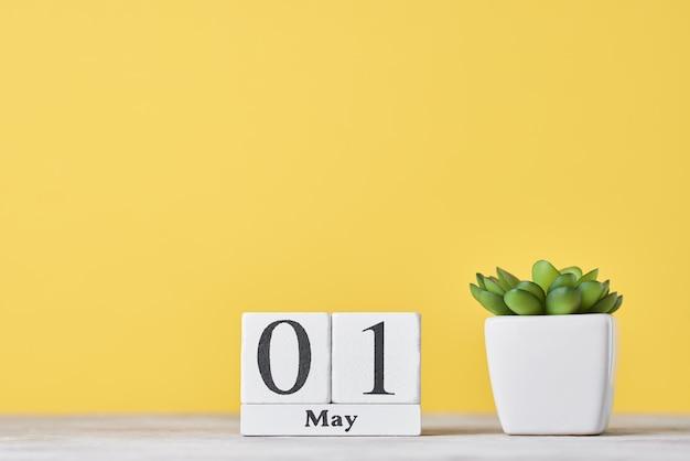 木製ブロックカレンダーと黄色に分離された植物 Premium写真