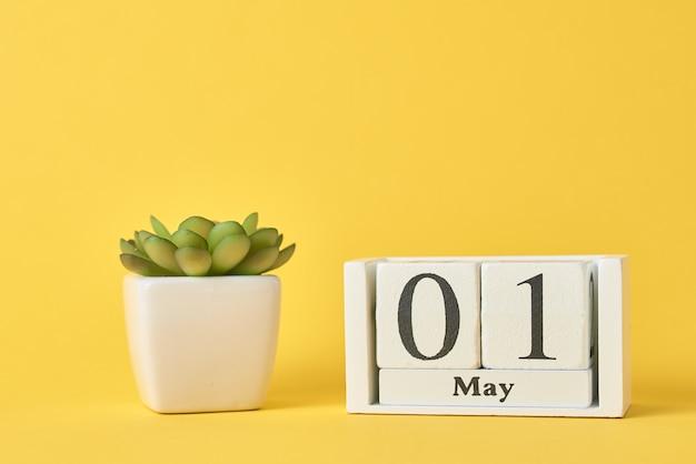 木製ブロックカレンダーと多肉植物 Premium写真