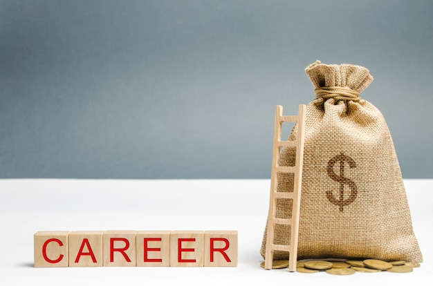 Wooden blocks with the word career, money bag and ladder. self-development and leadership skills. Premium Photo