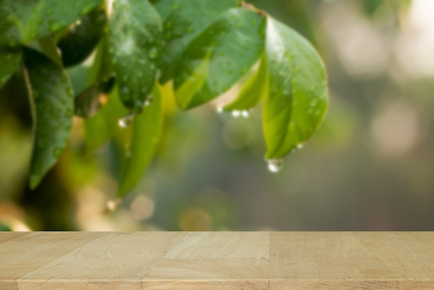 wooden board with water drops on green leaf with nature in rainy
