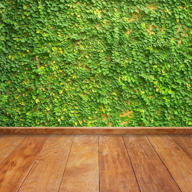 Wooden Boards With A Vine On The Wall Photo