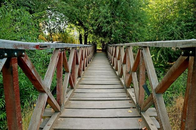 Wooden bridge across a river among lush green foliage in el calafate, patagonia, argentina Premium Photo