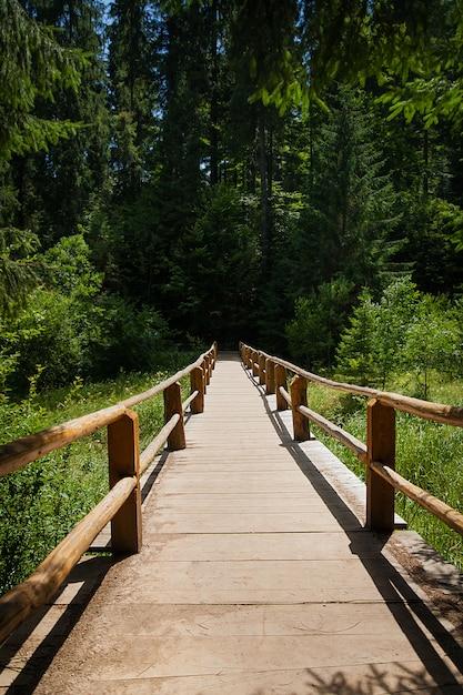 Wooden bridge over forest river Premium Photo