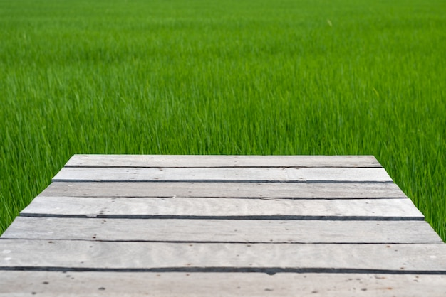 Wooden bridge on green rice fields background Premium Photo