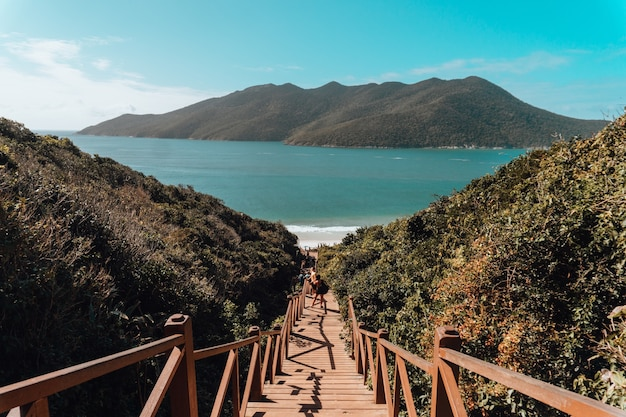 Wooden bridge surrounded by the sea and hills covered in greenery under a blue sky in brazil Free Photo