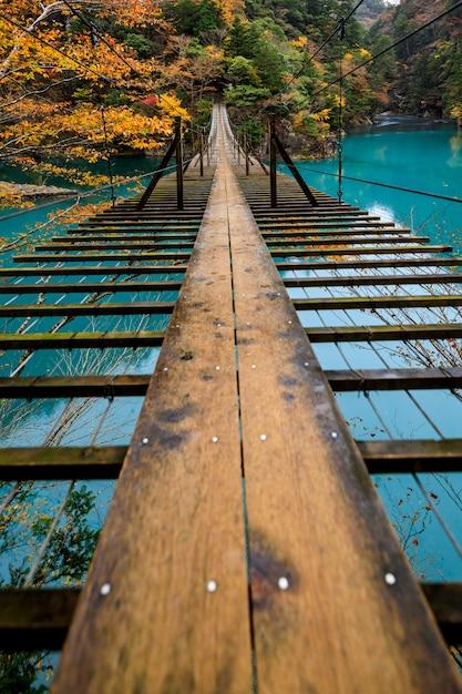 Подвес деревянный мост через зеленую реку в естественном лесу осенний сезон япония Premium Фотографии