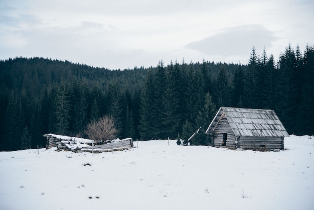 Wooden cabin on snow covered field Free Photo