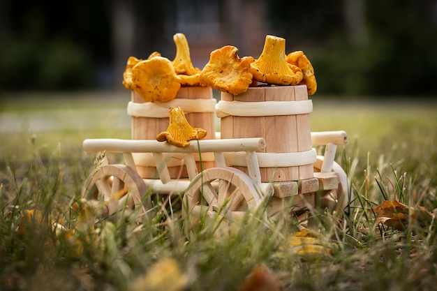A wooden cart with  fresh mushrooms Premium Photo