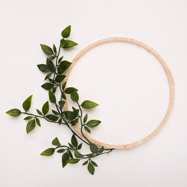 Wooden circle frame with green artificial leaves on white backdrop Free Photo