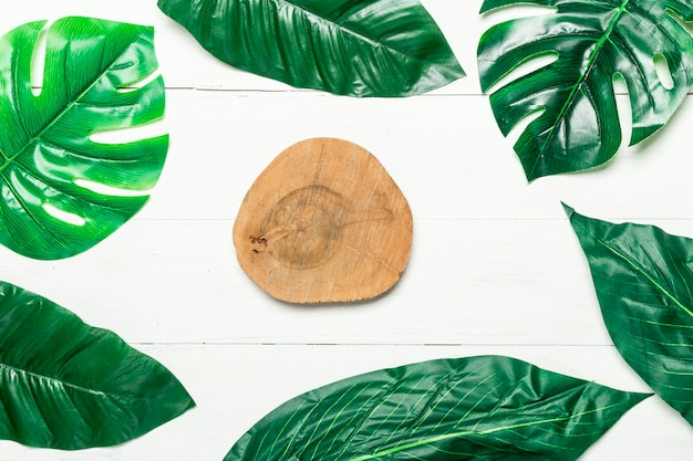 Wooden circle and green leaves around Free Photo