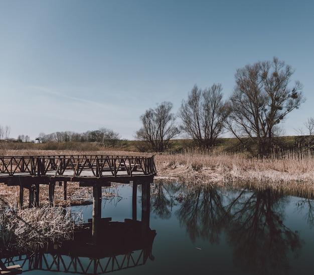 Деревянный причал возле озера с отражением окружающих деревьев Бесплатные Фотографии