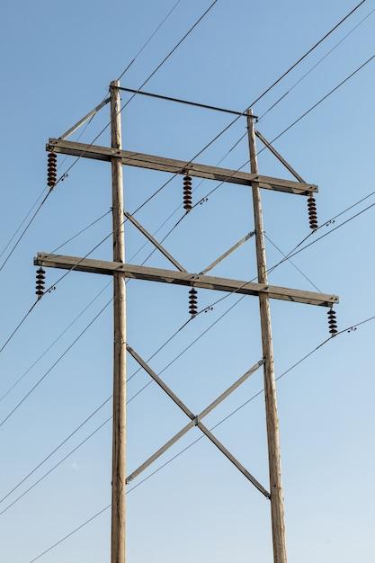 푸른 하늘 가진 나무 전기 극 무료 사진