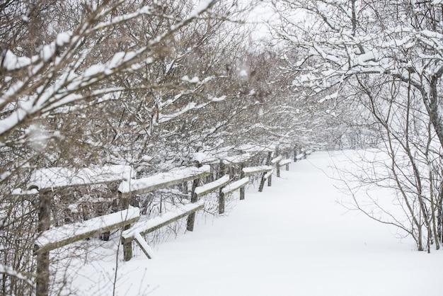 겨울 국가 배경에 눈 속에서 나무 울타리. 프리미엄 사진