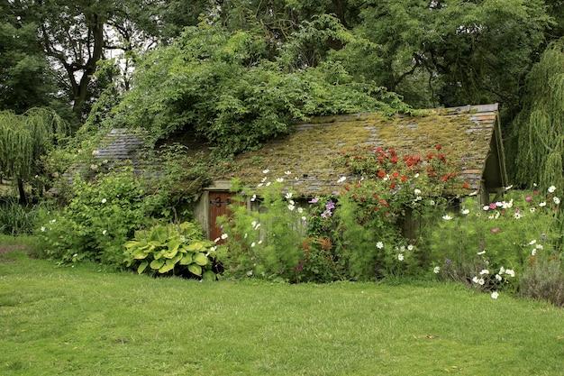 植物や花に囲まれた芝生のフィールドにある木造住宅 無料写真