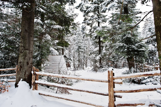 Wooden house at pine trees forest covered by snow Premium Photo