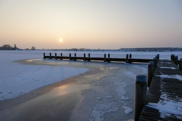 霧の空と凍った水の上の木の経路 無料写真