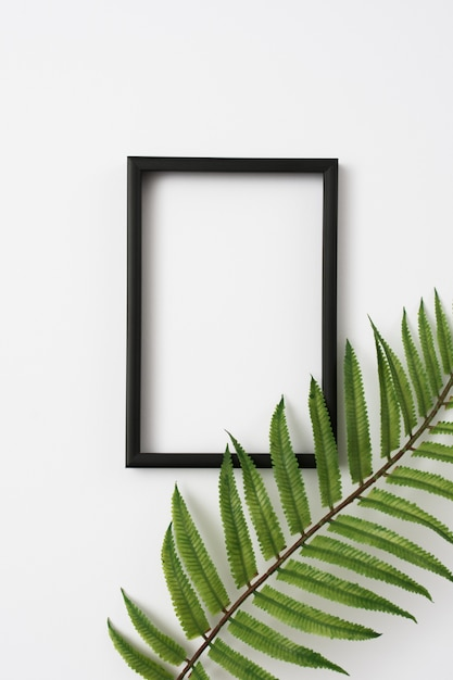 Wooden photo frame border and fern leaves branch on white background Premium Photo