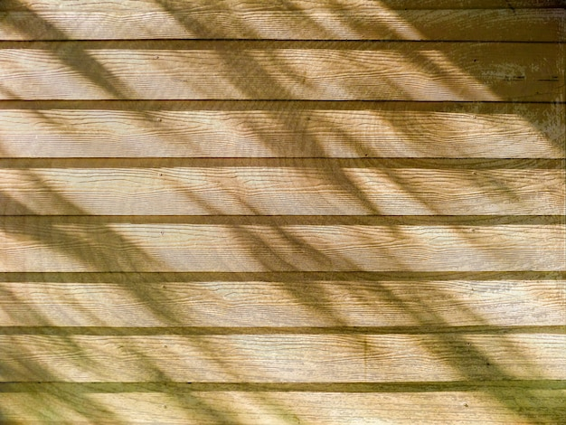 Wooden and shadow of tree sunlight Premium Photo
