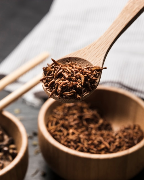 Wooden spoon full with fried insects Free Photo