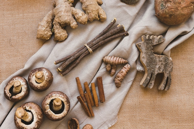 Wooden sticks and elk near spices and mushrooms Free Photo