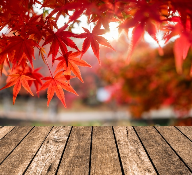 Wooden table top on blurred red maple leaves in corridor garden Premium Photo