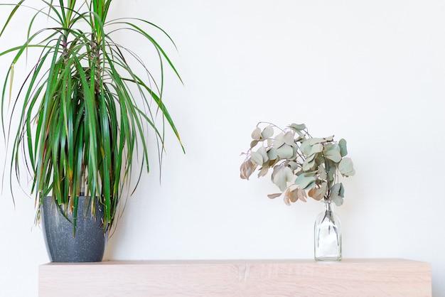 鍋に緑のドラセナ観葉植物とガラス瓶に乾燥したユーカリ植物の木製テーブル Premium写真