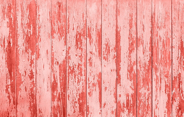 Wooden texture of popular living coral color Premium Photo