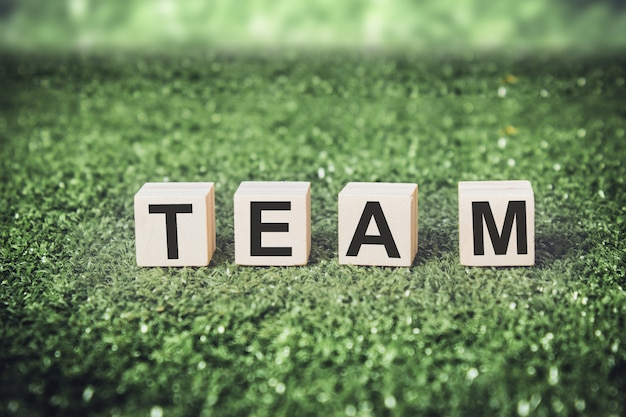 Word team made from wooden cubes or blocks on grass background. Premium Photo