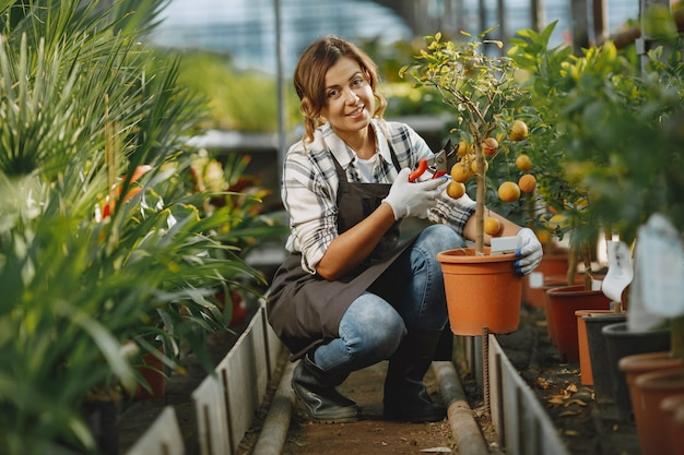 Worker take care to flowerpoots. girl in a white shirt. woman in a gloves Free Photo