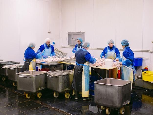 Рабочие работают на заводе по производству куриного мяса. Premium Фотографии