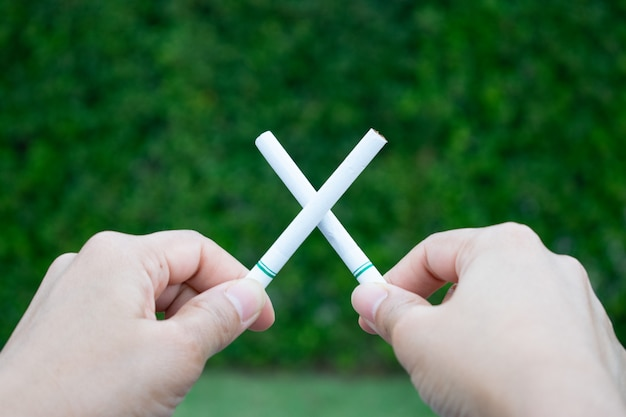World no tobacco day. stop smoking. close up woman hand holding crossed cigarettes. Premium Photo